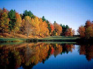 Nature-In-Autumn6